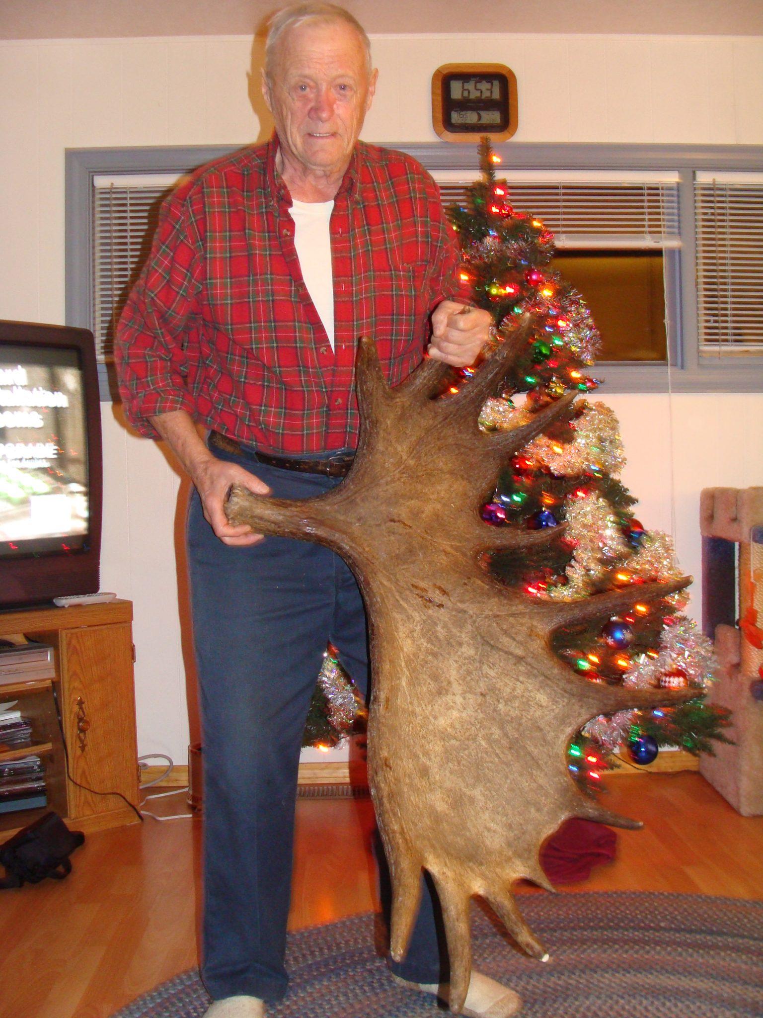 Asequibles Mule Deer Cazas